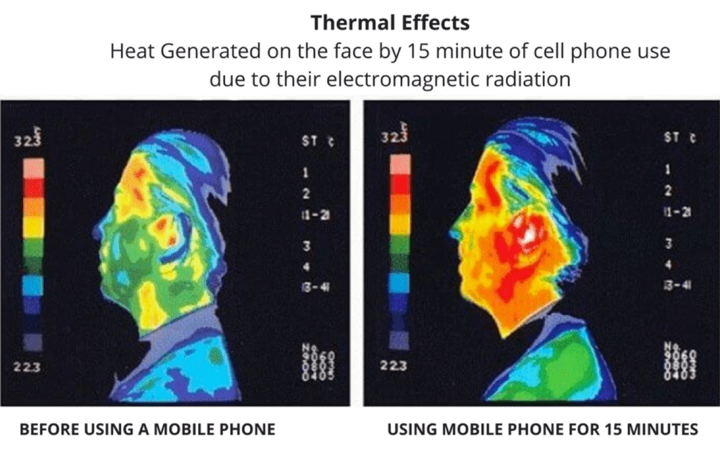 thermal effect as a health risk of using a mobile phone